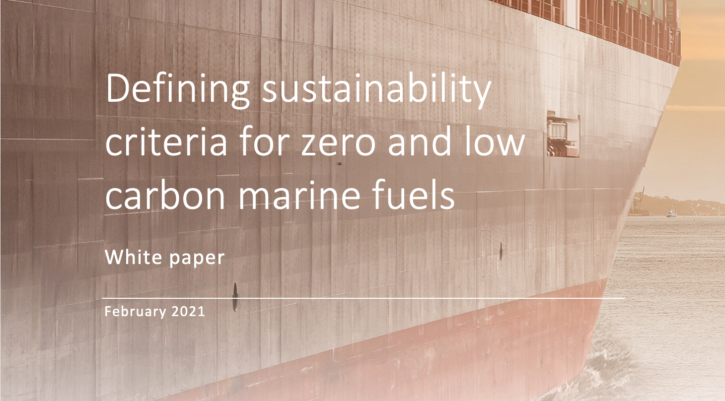 Defining sustainability criteria for zero and low carbon marine fuels